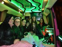 Girls in the limousine