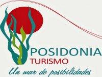 Posidonia turismo