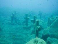 Underwater landscapes