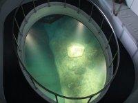 Glass bottom for underwater vision
