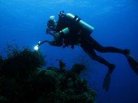 Realiza inmersiones sorprendentes