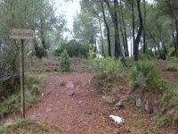 Camino del Bartolo