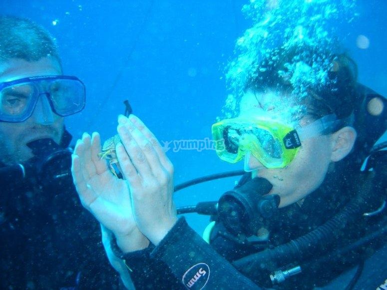 Vive la experiencia submarina
