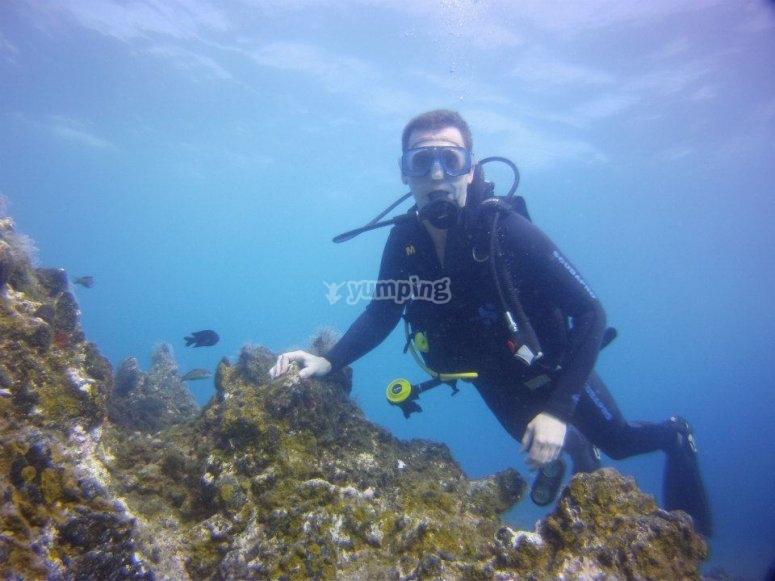 Curso Scuba Diver en Tías