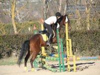 En una clase de equitacion