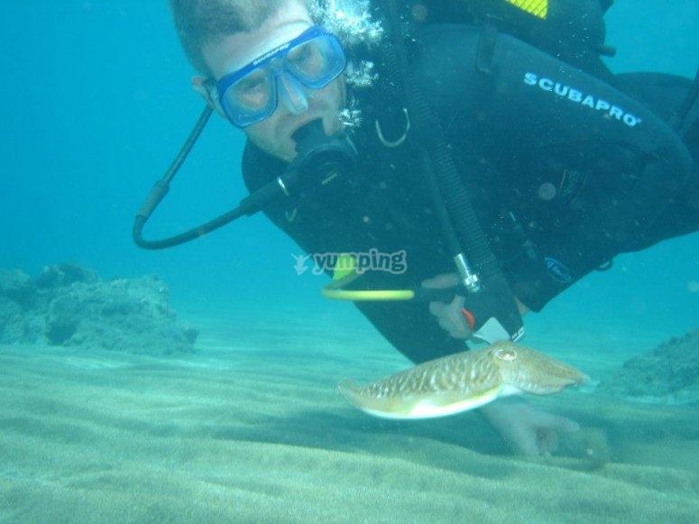 兰萨罗特岛的救援潜水员课程