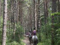 Pasando entre los arboles con los caballos