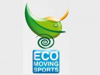 Eco Moving Sports Segway