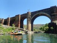 Actividad de rafting en río