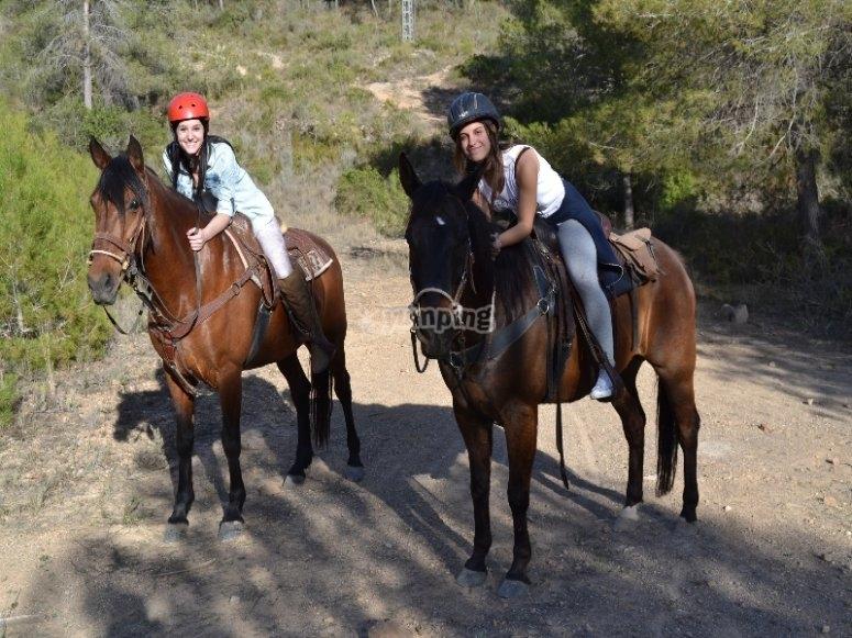 Disfrutar de nuestros caballos