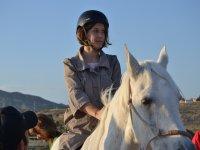 Subida en el caballo