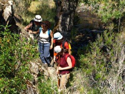 Allcaravan Parque Nacional de Cabañeros