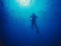 Inmersión de buceo con equipo propio, en Lanzarote