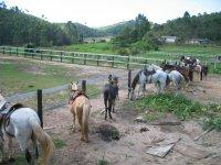 Ruta a caballo para grupos en Lleida