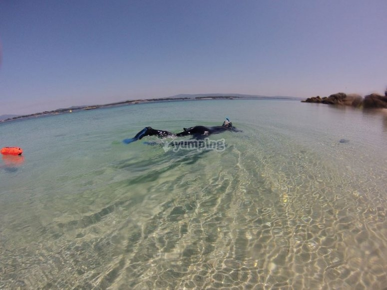 Buceo de superficie en Arosa
