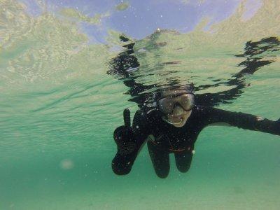阿罗萨岛浮潜会议,全职