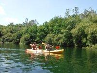 Rowing in the Vigo estuary