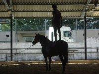 Iníciate en la equitación