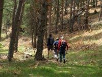景观染白徒步旅行Valsaín
