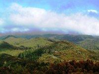 Vistas del Parque Natural de Garajonay