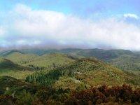 Vistas del Parque Nacional de Garajonay