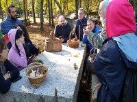 Gathering mushrooms in Pontevedra
