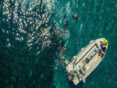 Curso PADI Open Water Diver, en San José