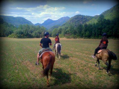 Passeggiata a cavallo attraverso Font de Palau, 2 ore