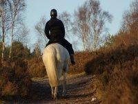 Excursión a caballo en Cantabria