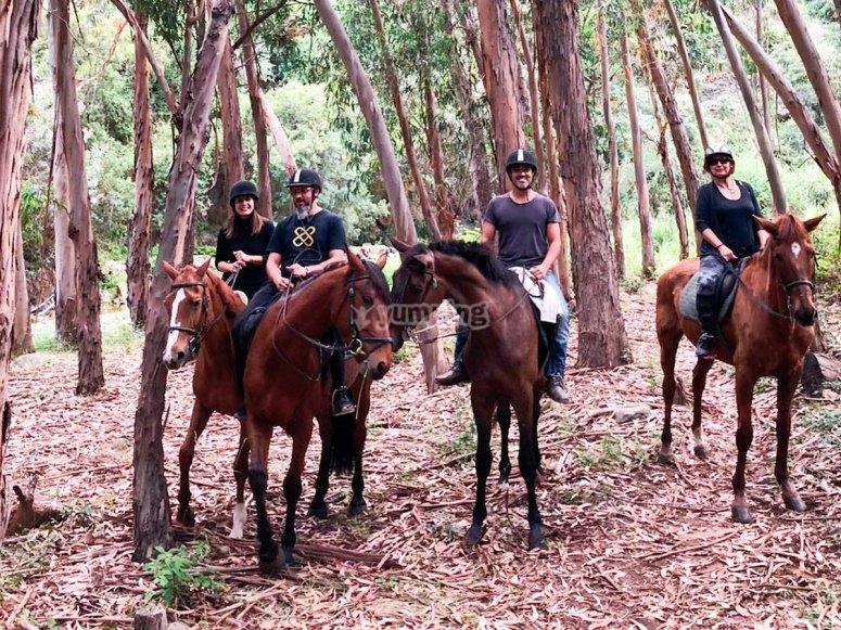 Salida  a caballo en grupos