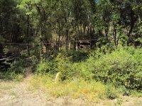 Campo del Valle del Ambroz