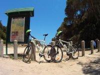 Excursiones de bici de monaña