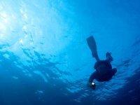 在海上浮潜