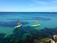 Paddle surf rental