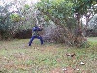 Ataque detras de las ramas secas