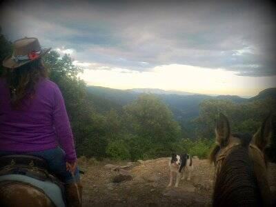 Passeggiata a cavallo a Lliurona, giornata intera