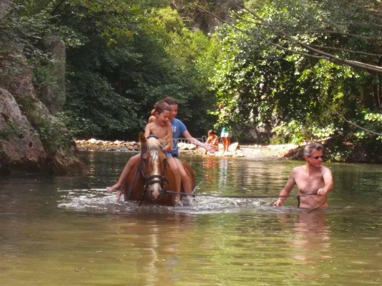 Fare il bagno con il cavallo