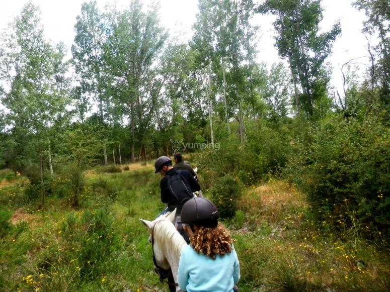 En Las Islas a caballo