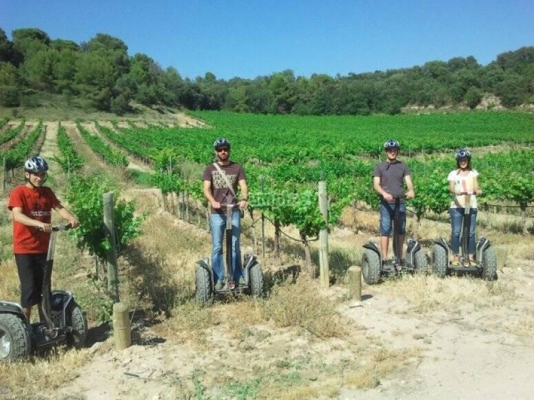 En segway por los viñedos
