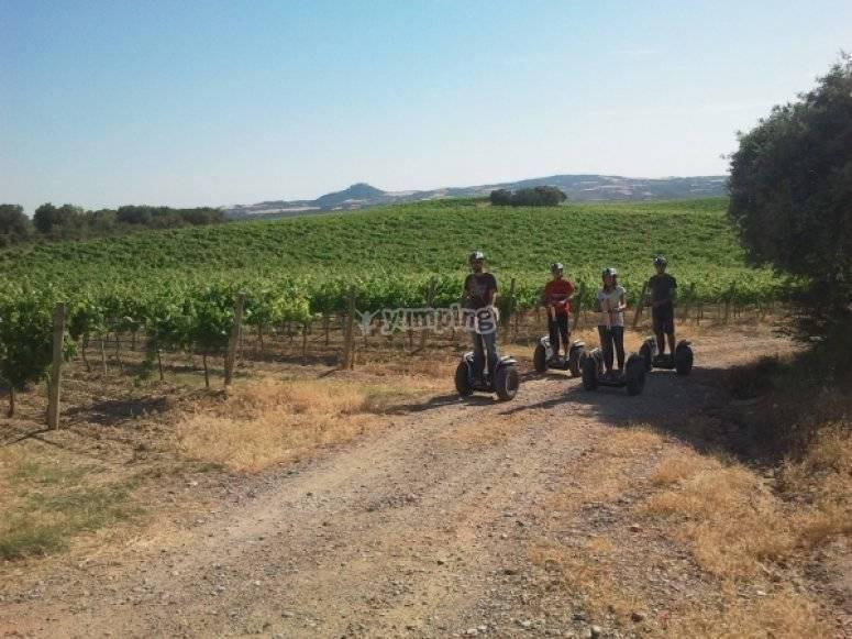 Recorrido en segway por los viñedos