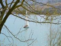 观点帆船和航海帆帆船帆船中心作用nauticas锯