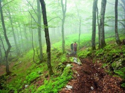 Hiking trip in Concejo de Aller