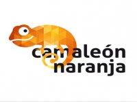 Camaleón Naranja