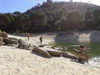 Relajacion en la orilla