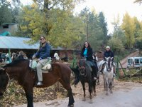 Starting the horse riding