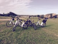 Various types of bikes