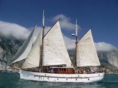 Paseo en velero puerto Banús para grupos, 3 horas