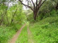 标志地球母亲体验到山地自行车路线山地自行车路线