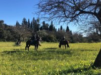 With the horses on the route