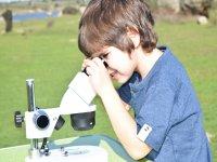 Mirando por el microscopio